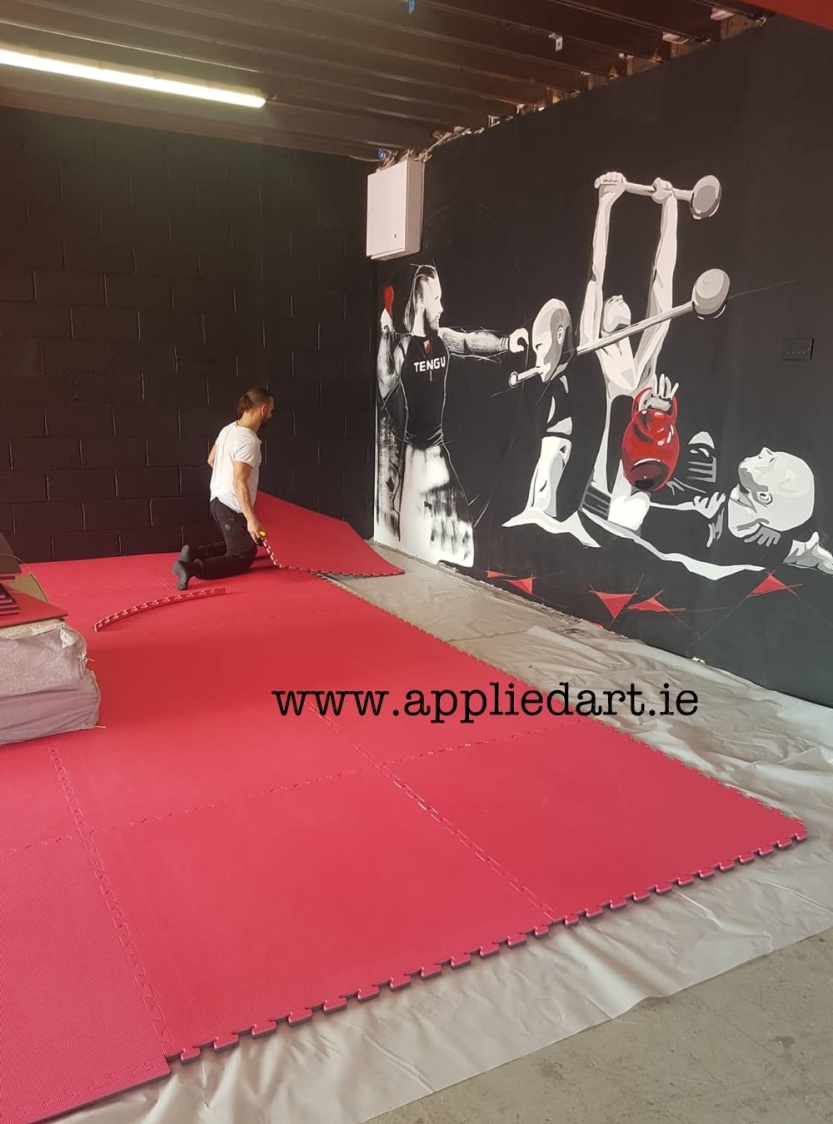 Mural Painteed for Tengu Ireland Dublin Gym Art Graphics painted in Ireland by Applied Art ie Klaudia Byrne Mural Branding Design (16)