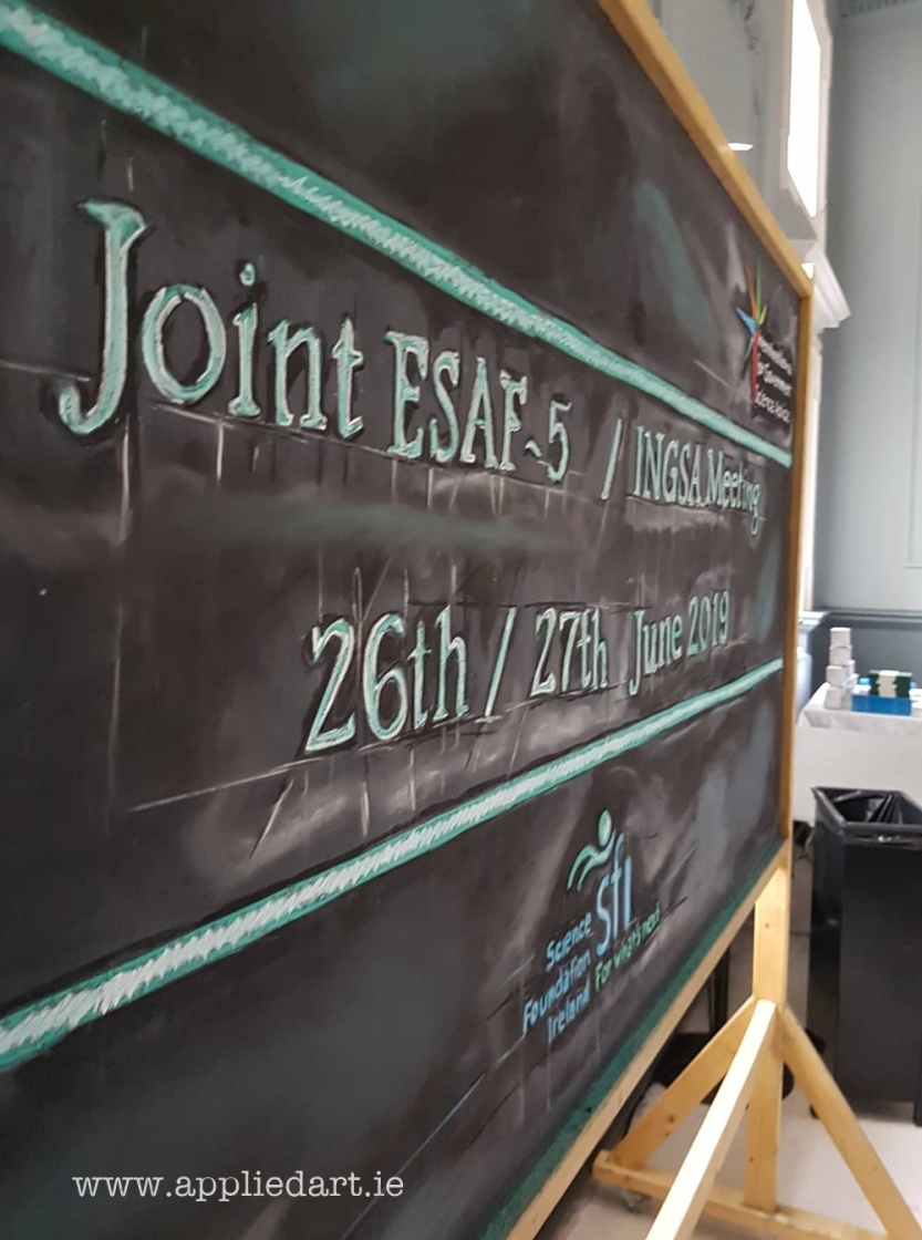 Trinity College Applied art even boards chalk art for event science logos chalk drawn klaudia byrne dublin artist murals art services event artistic ideas foer event decoration (14)